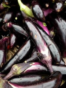 Asian eggplant!